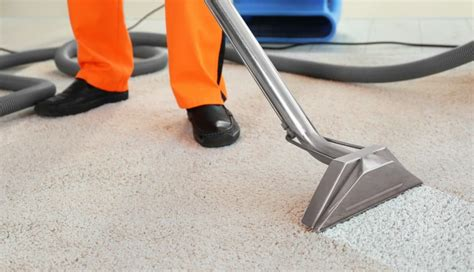 What horrors are lurking in your office carpet?